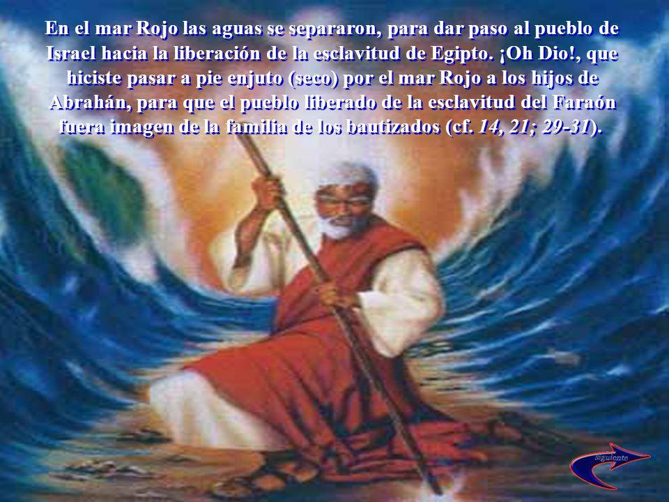 En el mar Rojo las aguas se separaron, para dar paso al pueblo de Israel hacia la liberación de la esclavitud de Egipto. ¡Oh Dio!, que hiciste pasar a