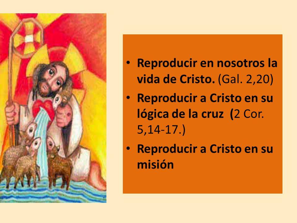 Reproducir en nosotros la vida de Cristo. (Gal. 2,20) Reproducir a Cristo en su lógica de la cruz (2 Cor. 5,14-17.) Reproducir a Cristo en su misión