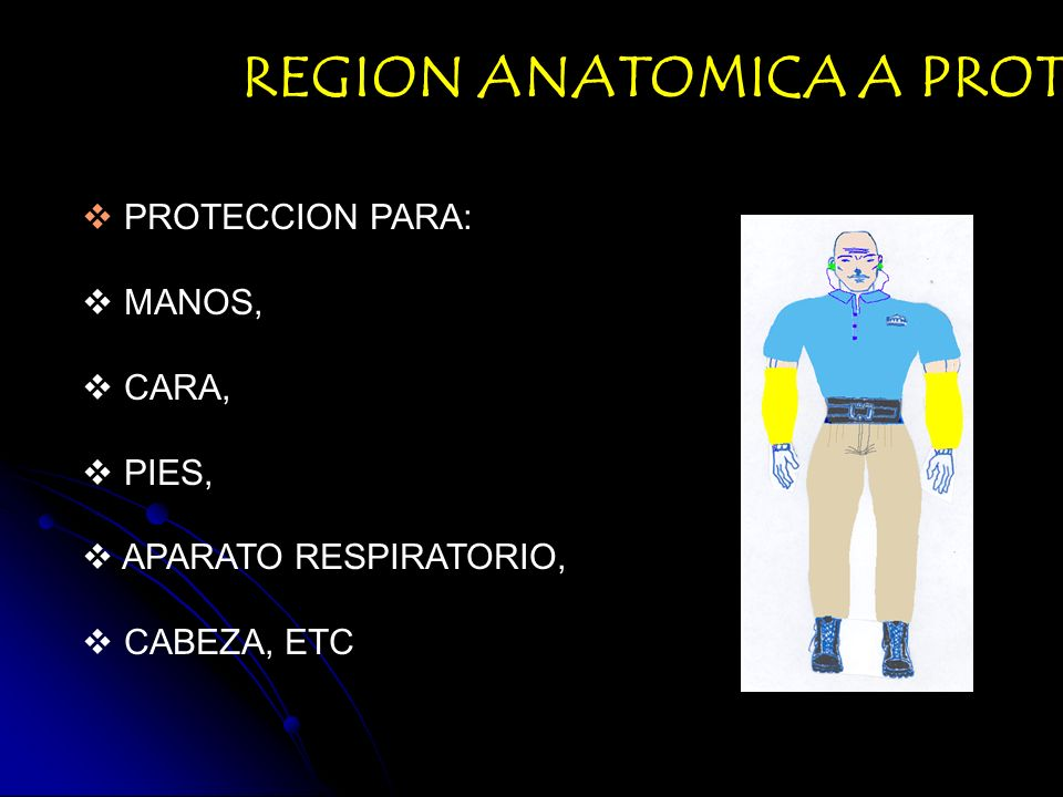 REGION ANATOMICA A PROTEGER: PROTECCION PARA: MANOS, CARA, PIES, APARATO RESPIRATORIO, CABEZA, ETC