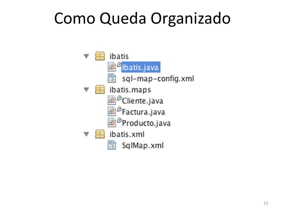 19 Como Queda Organizado