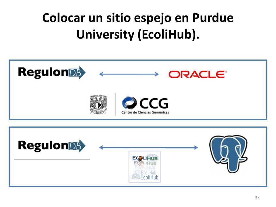 Colocar un sitio espejo en Purdue University (EcoliHub). 35