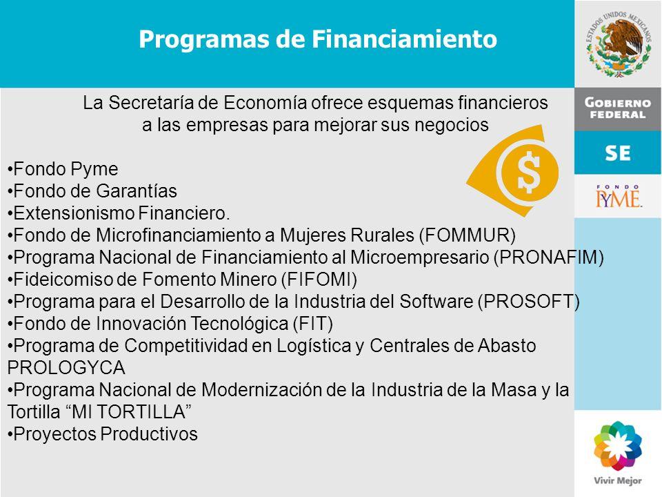 11 de Mayo de 2007Delegación Federal Cuernavaca La Secretaría de Economía ofrece esquemas financieros a las empresas para mejorar sus negocios Fondo P