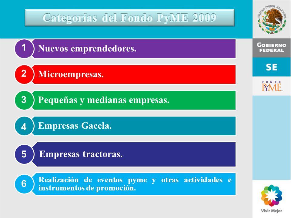 11 de Mayo de 2007Delegación Federal Cuernavaca Nuevos emprendedores. Microempresas. Pequeñas y medianas empresas. Empresas Gacela. Empresas tractoras