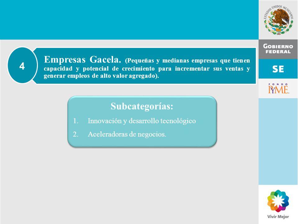 11 de Mayo de 2007Delegación Federal Cuernavaca Empresas Gacela. (Pequeñas y medianas empresas que tienen capacidad y potencial de crecimiento para in