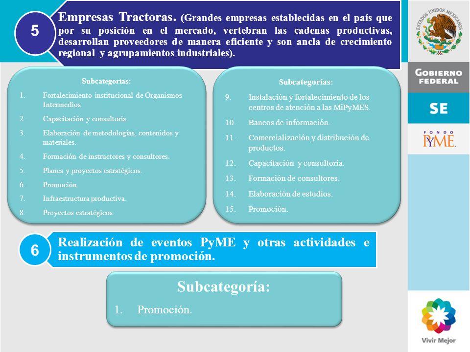 11 de Mayo de 2007Delegación Federal Cuernavaca Realización de eventos PyME y otras actividades e instrumentos de promoción. 6 Subcategoría: 1.Promoci