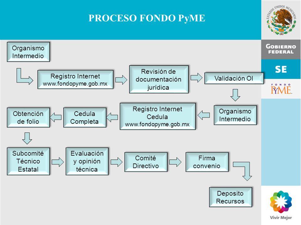 11 de Mayo de 2007Delegación Federal Cuernavaca PROCESO FONDO PyME Organismo Intermedio Registro Internet www.fondopyme.gob.mx Revisión de documentaci