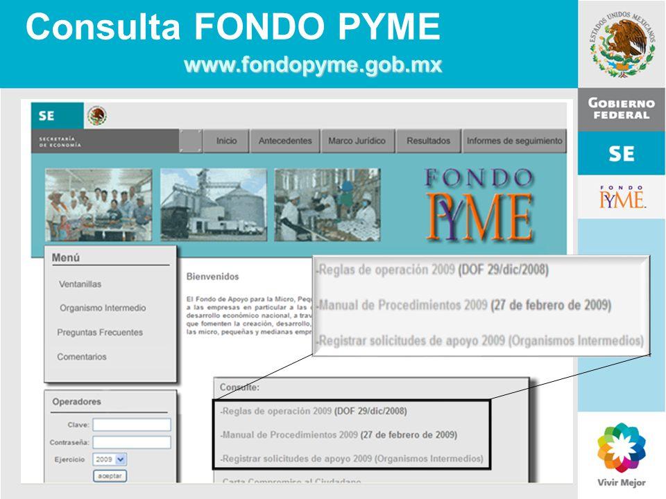11 de Mayo de 2007Delegación Federal Cuernavaca Consulta FONDO PYME www.fondopyme.gob.mx