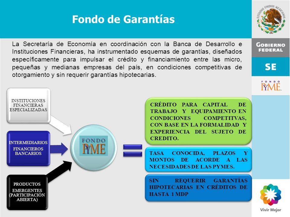 11 de Mayo de 2007Delegación Federal Cuernavaca CRÉDITO PARA CAPITAL DE TRABAJO Y EQUIPAMIENTO EN CONDICIONES COMPETITVAS, CON BASE EN LA FORMALIDAD Y