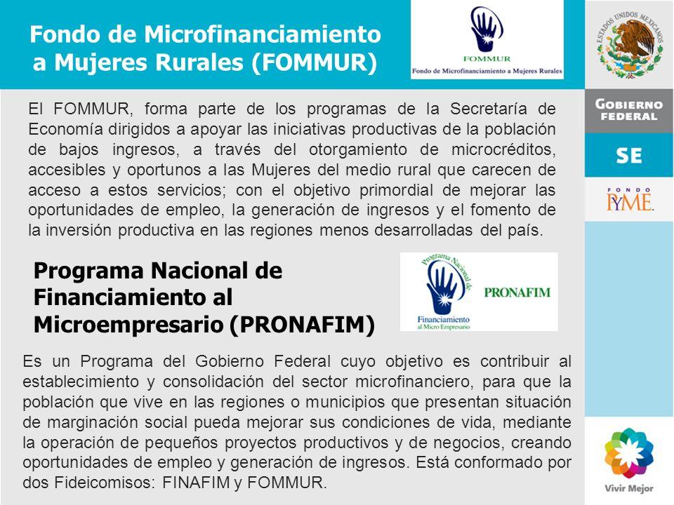 11 de Mayo de 2007Delegación Federal Cuernavaca Fondo de Microfinanciamiento a Mujeres Rurales (FOMMUR) El FOMMUR, forma parte de los programas de la