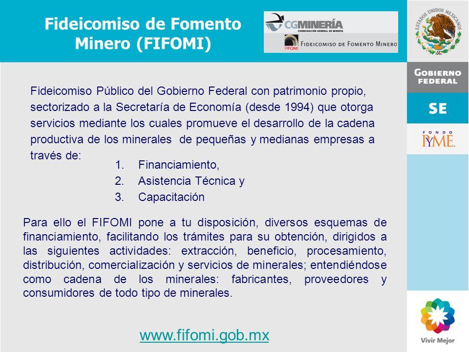 11 de Mayo de 2007Delegación Federal Cuernavaca Fideicomiso Público del Gobierno Federal con patrimonio propio, sectorizado a la Secretaría de Economí
