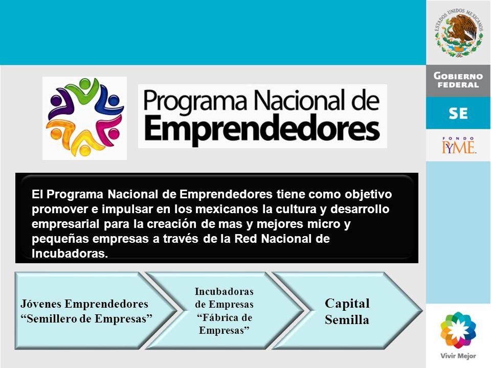 11 de Mayo de 2007Delegación Federal Cuernavaca El Programa Nacional de Emprendedores tiene como objetivo promover e impulsar en los mexicanos la cult