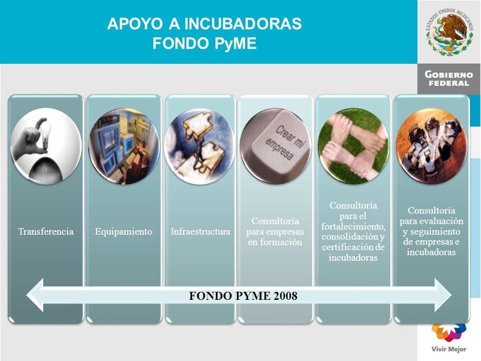 11 de Mayo de 2007Delegación Federal Cuernavaca TransferenciaEquipamientoInfraestructura Consultoría para empresas en formación Consultoría para el fo