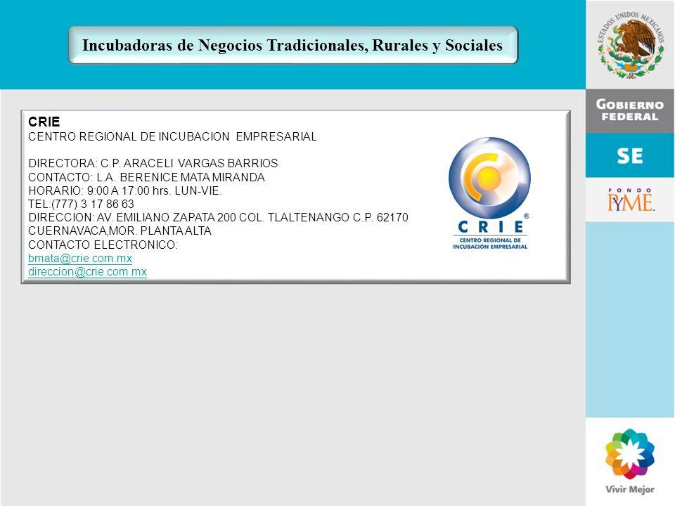 11 de Mayo de 2007Delegación Federal Cuernavaca CRIE CENTRO REGIONAL DE INCUBACION EMPRESARIAL DIRECTORA: C.P. ARACELI VARGAS BARRIOS CONTACTO: L.A. B