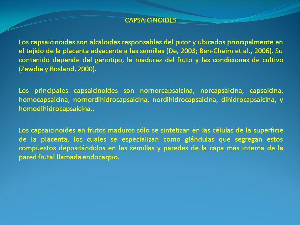 CAPSAICINOIDES Los capsaicinoides son alcaloides responsables del picor y ubicados principalmente en el tejido de la placenta adyacente a las semillas