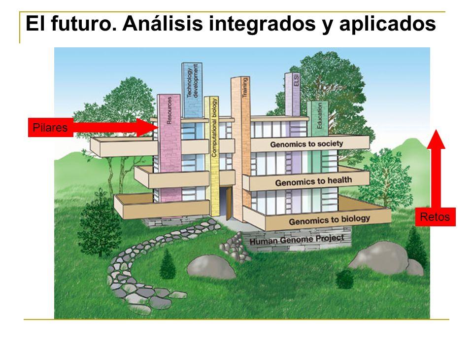 El futuro. Análisis integrados y aplicados Pilares Retos
