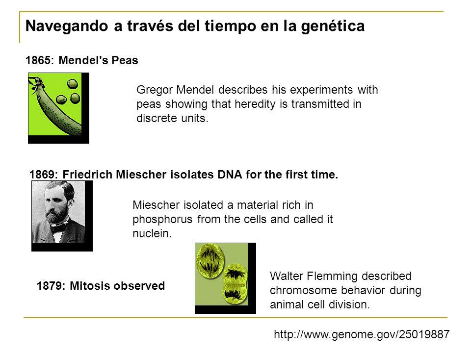 A future bioinformatics « world » for computers .