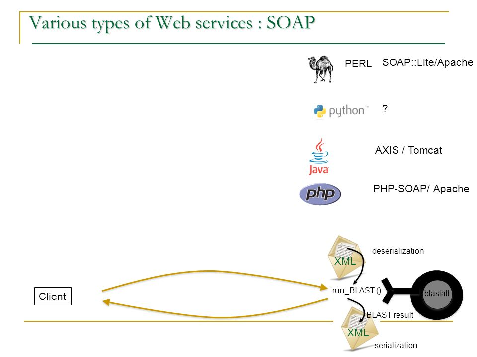 Various types of Web services : SOAP PERL run_BLAST () SOAP::Lite/Apache XML BLAST result Client .