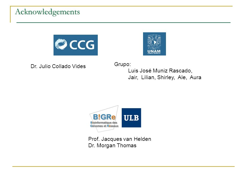 Acknowledgements Prof. Jacques van Helden Dr.