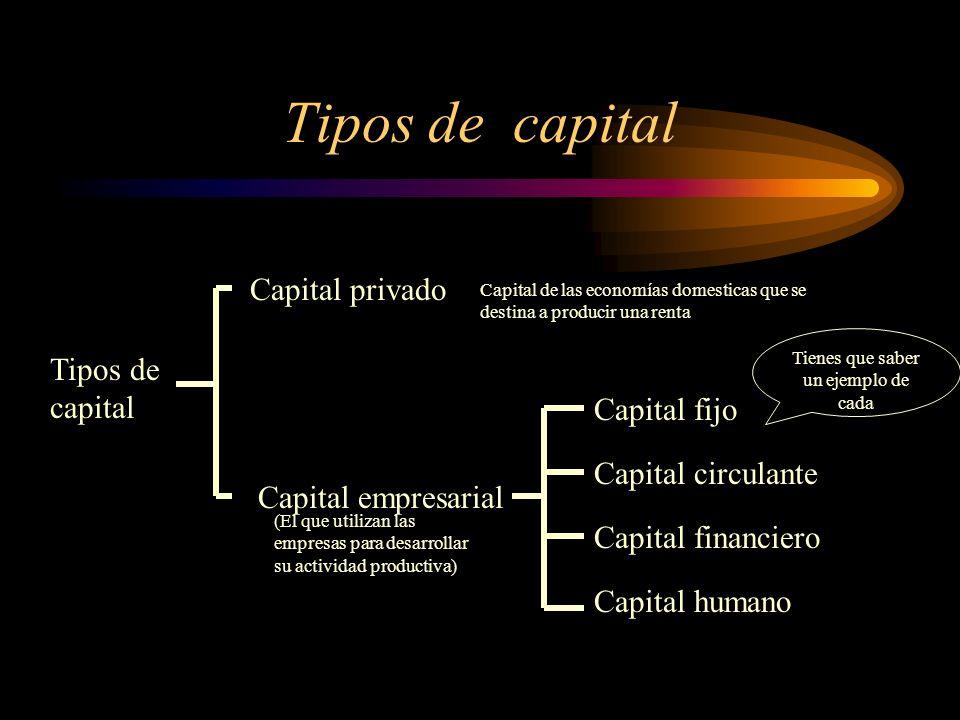 Tipos de capital Capital privado Capital empresarial Capital fijo Capital circulante Capital financiero Capital humano Capital de las economías domest