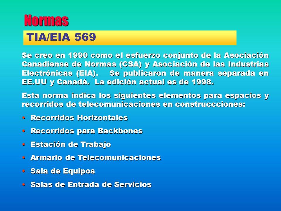 Normas Se creo en 1990 como el esfuerzo conjunto de la Asociación Canadiense de Normas (CSA) y Asociación de las Industrias Electrónicas (EIA). Se pub