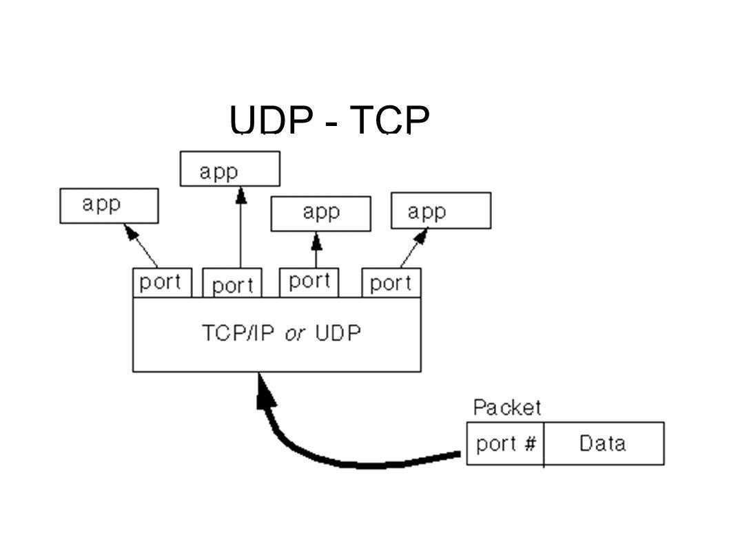 Puertos Los protocolos TCP y UDP utilizan puertos para dirigir los datos de entrada a los procesos particulares que se están ejecutando en un ordenador.