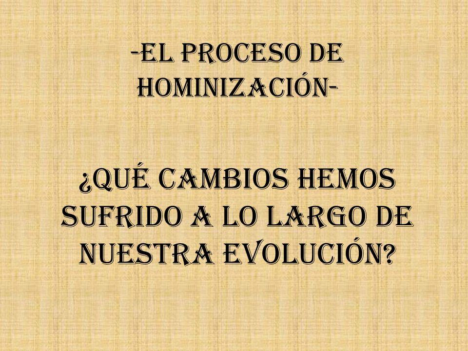 -El Proceso de Hominización- ¿Qué cambios hemos sufrido a lo largo de nuestra evolución?