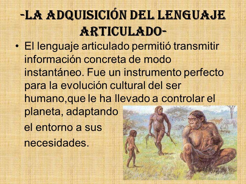 -La adquisición del lenguaje articulado- El lenguaje articulado permitió transmitir información concreta de modo instantáneo. Fue un instrumento perfe