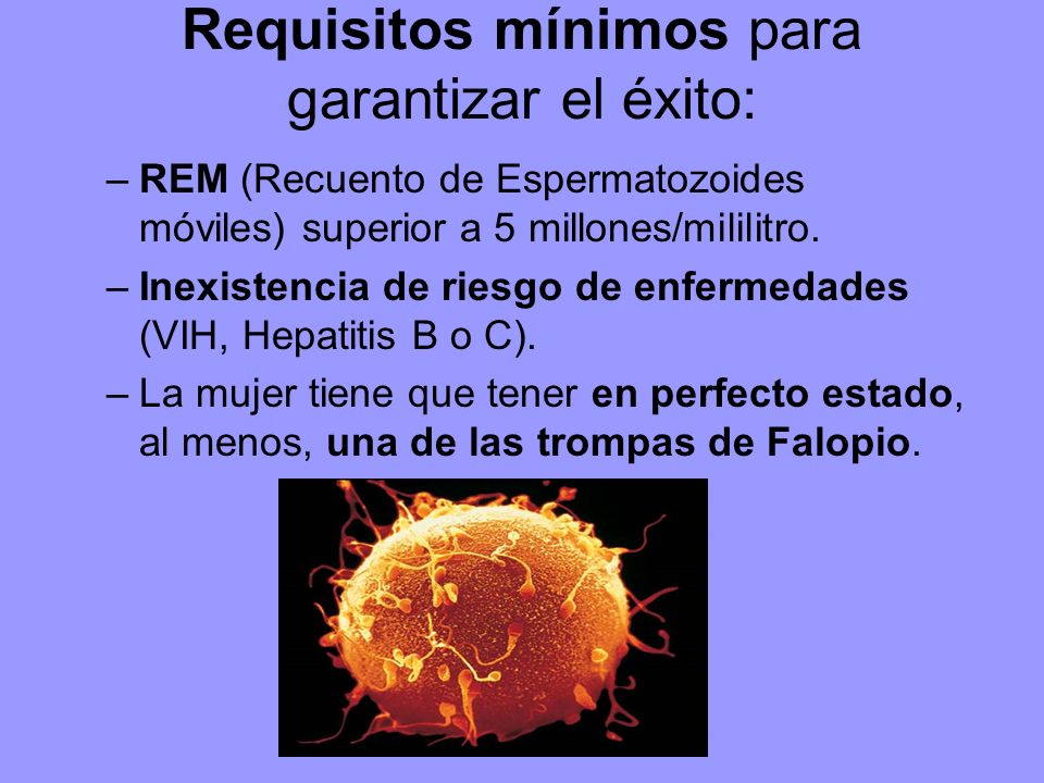 Requisitos mínimos para garantizar el éxito: –REM (Recuento de Espermatozoides móviles) superior a 5 millones/mililitro.