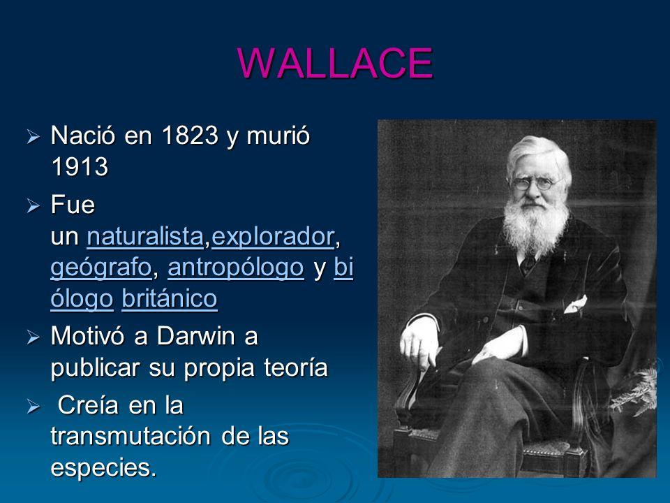 WALLACE Nació en 1823 y murió 1913 Nació en 1823 y murió 1913 Fue un naturalista,explorador, geógrafo, antropólogo y bi ólogo británico Fue un natural