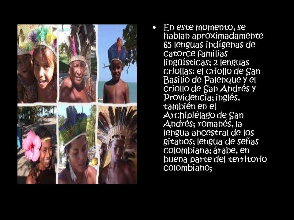 En este momento, se hablan aproximadamente 65 lenguas indígenas de catorce familias lingüísticas; 2 lenguas criollas: el criollo de San Basilio de Pal
