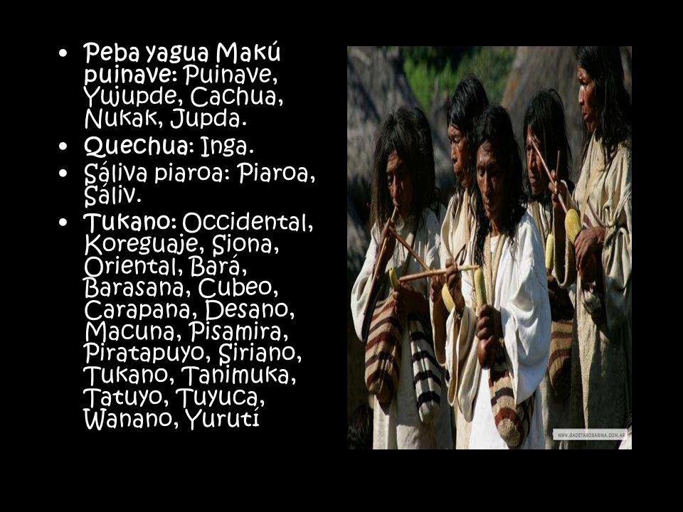 Peba yagua Makú puinave: Puinave, Yujupde, Cachua, Nukak, Jupda. Quechua: Inga. Sáliva piaroa: Piaroa, Sáliv. Tukano: Occidental, Koreguaje, Siona, Or