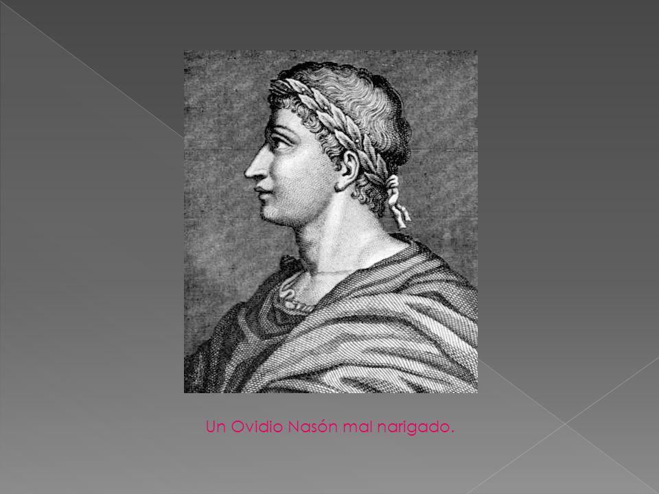 Un Ovidio Nasón mal narigado.