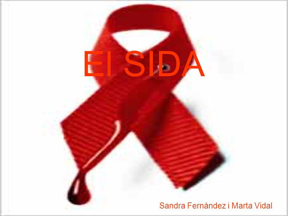 Sandra Fernàndez i Marta Vidal El SIDA