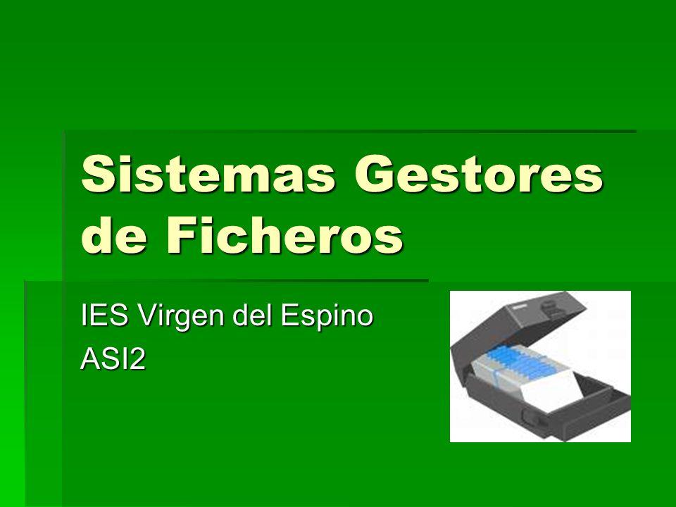 Sistemas Gestores de Ficheros IES Virgen del Espino ASI2