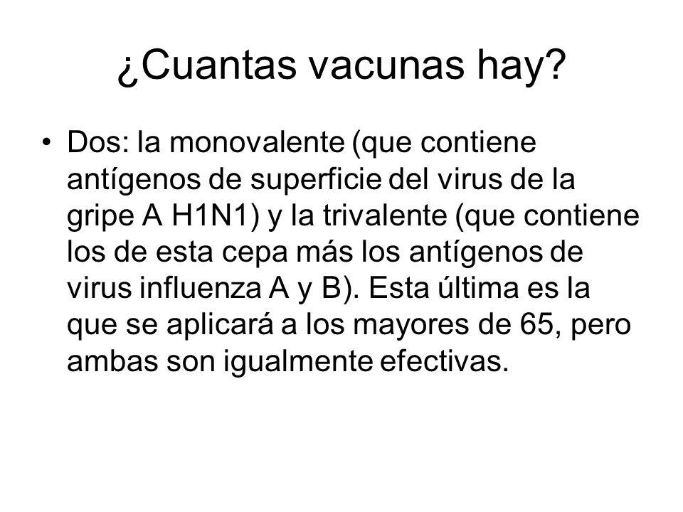 ¿Cuantas vacunas hay? Dos: la monovalente (que contiene antígenos de superficie del virus de la gripe A H1N1) y la trivalente (que contiene los de est