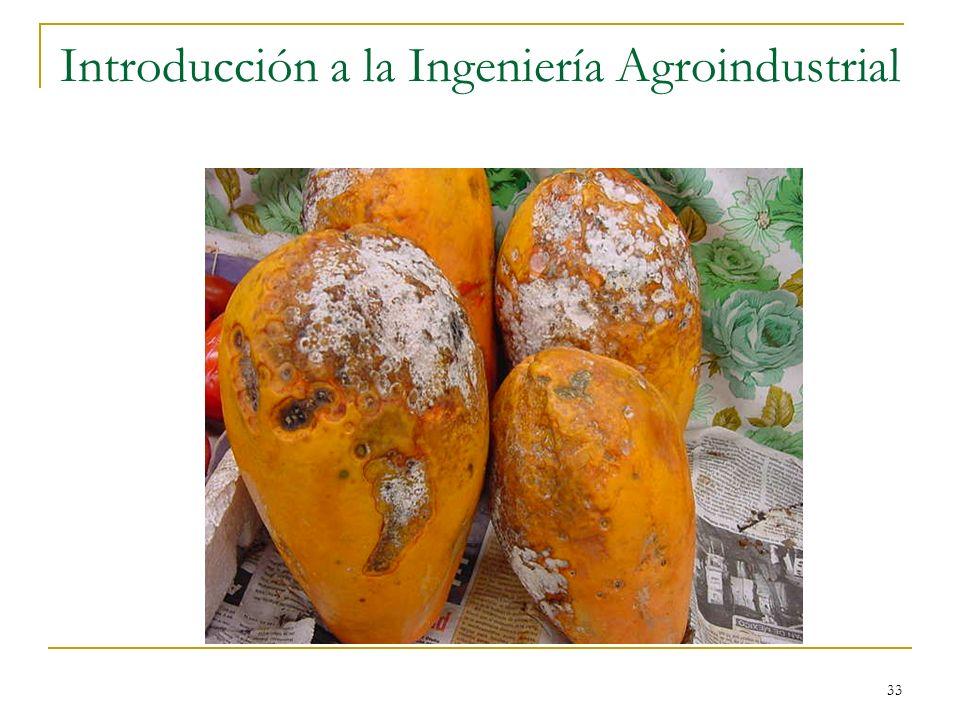 33 Introducción a la Ingeniería Agroindustrial