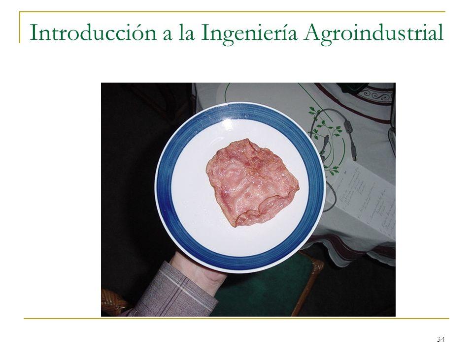 34 Introducción a la Ingeniería Agroindustrial