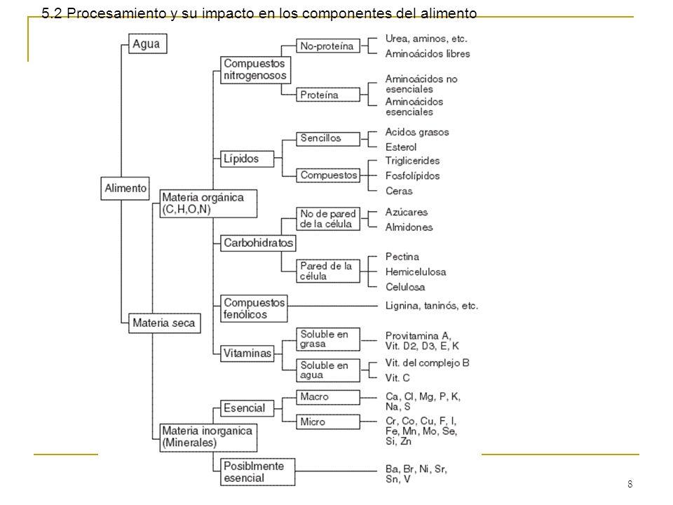 8 5.2 Procesamiento y su impacto en los componentes del alimento