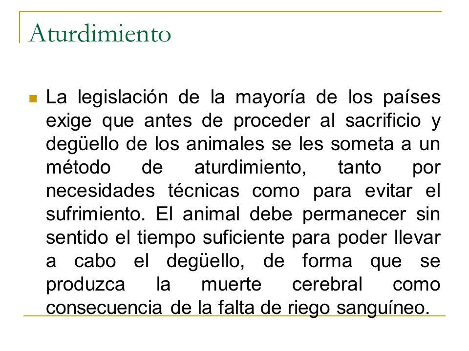Aturdimiento La legislación de la mayoría de los países exige que antes de proceder al sacrificio y degüello de los animales se les someta a un método