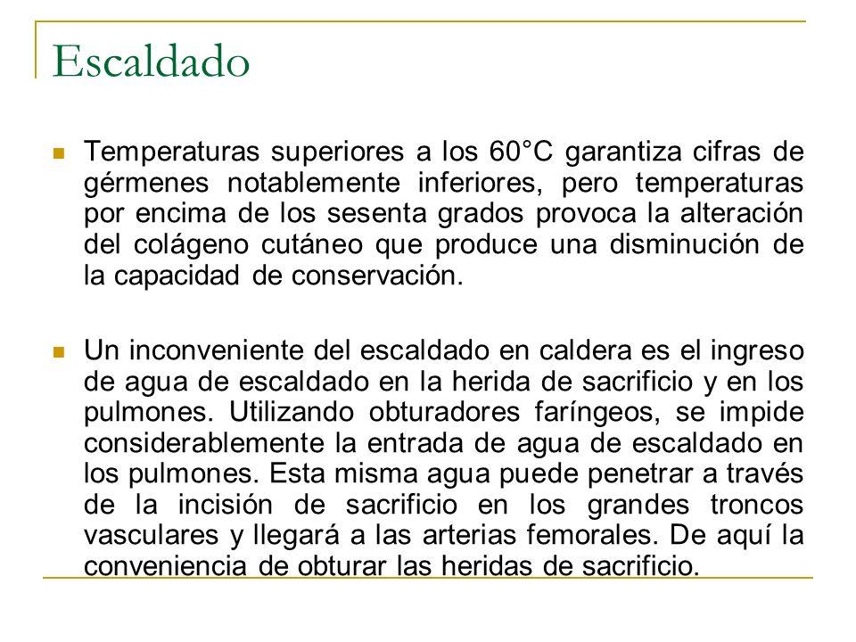 Escaldado Temperaturas superiores a los 60°C garantiza cifras de gérmenes notablemente inferiores, pero temperaturas por encima de los sesenta grados