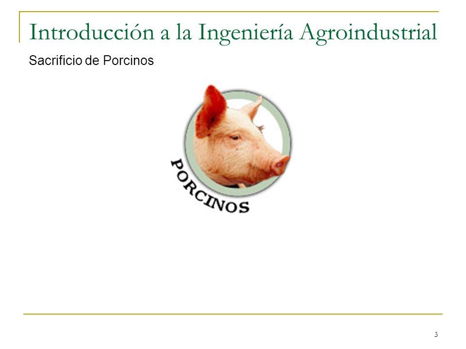 3 Introducción a la Ingeniería Agroindustrial Sacrificio de Porcinos