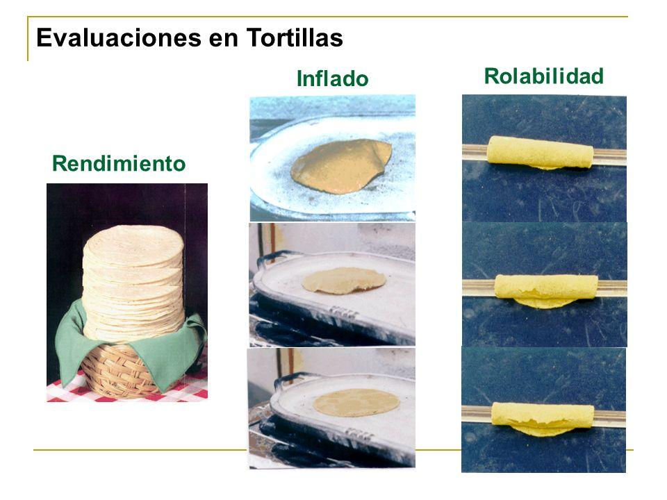 Inflado Rolabilidad Rendimiento Evaluaciones en Tortillas