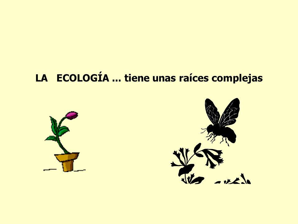 LA ECOLOGÍA... tiene unas raíces complejas