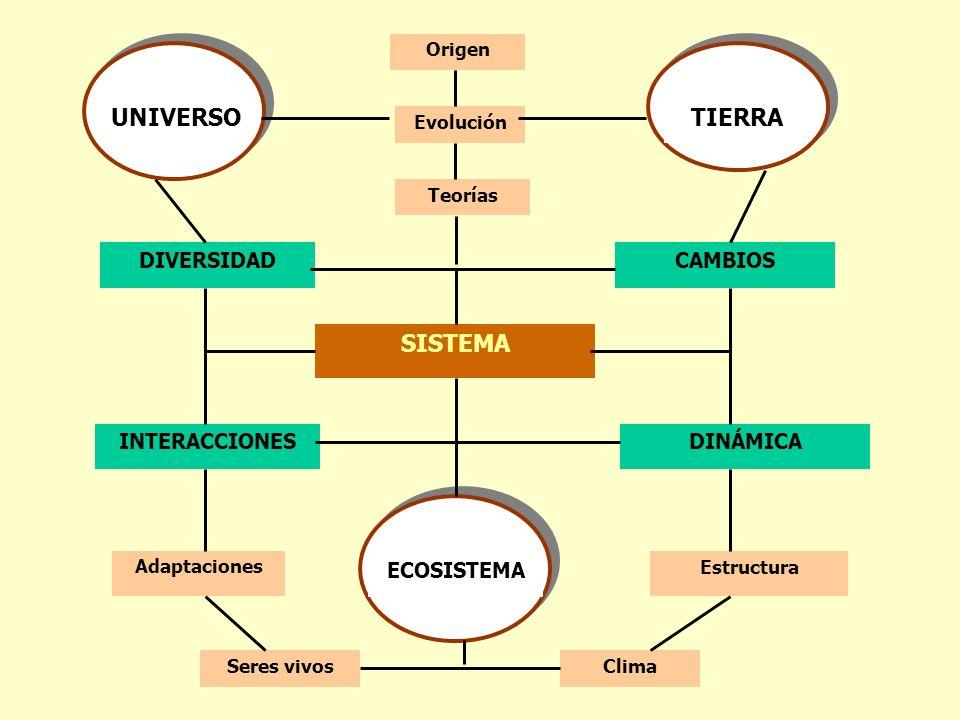 SISTEMA DIVERSIDADCAMBIOS INTERACCIONESDINÁMICA Origen UNIVERSOTIERRA ECOSISTEMA Evolución AdaptacionesEstructura Seres vivosClima Teorías