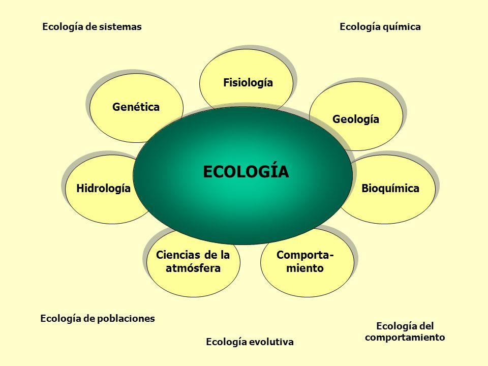 Genética Fisiología Geología Bioquímica Comporta- miento Ciencias de la atmósfera Hidrología ECOLOGÍA Ecología de sistemas Ecología de poblaciones Eco
