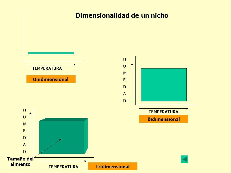 TEMPERATURA H U M E D A D H U M E D A D TEMPERATURA TEMPERATURA Dimensionalidad de un nicho Unidimensional Tridimensional Bidimensional Tamaño del ali