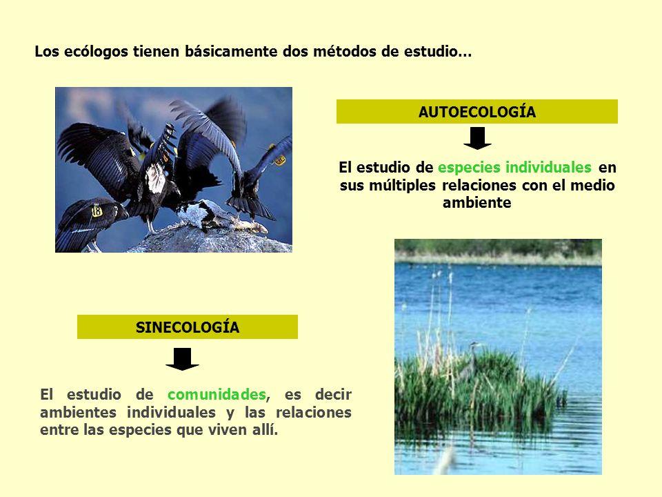 Los ecólogos tienen básicamente dos métodos de estudio... El estudio de especies individuales en sus múltiples relaciones con el medio ambiente El est