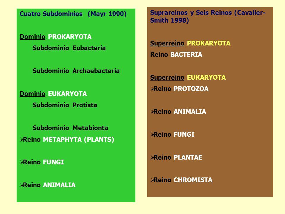 Cuatro Subdominios (Mayr 1990) Dominio PROKARYOTA Subdominio Eubacteria Subdominio Archaebacteria Dominio EUKARYOTA Subdominio Protista Subdominio Met