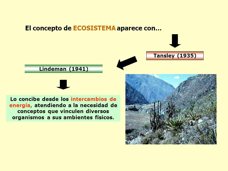 El concepto de ECOSISTEMA aparece con… Tansley (1935) Lo concibe desde los intercambios de energía, atendiendo a la necesidad de conceptos que vincule