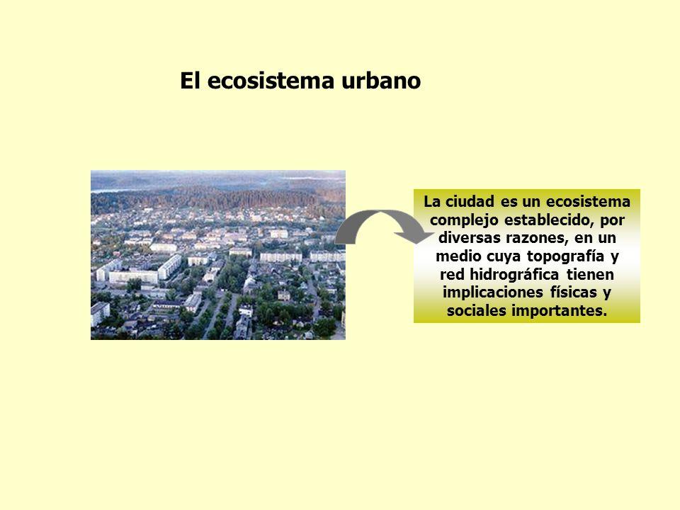 La ciudad es un ecosistema complejo establecido, por diversas razones, en un medio cuya topografía y red hidrográfica tienen implicaciones físicas y s